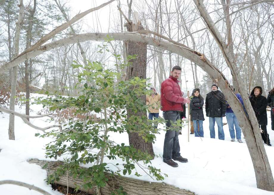 Steve Conaway, stewardship & outreach manager for the Greenwich Land Trust, speaks about the Holly bush, at left, while leading a winter nature walk at Duck Pond Hill, Greenwich, Conn., Tuesday, Feb. 25, 2014. Conaway spoke about how wildlife survives the winter and how to identify trees and plants without their leaves. Photo: Bob Luckey / Greenwich Time