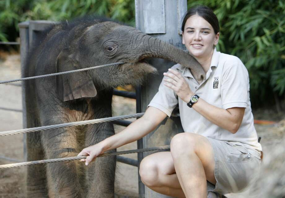 Martina Stevens, (cq name) elephant manager at the Houston Zoo, poses with Shanti's newborn son (still not named) on Thursday October 5, 2006. The baby elephant was born on October 1, 2006 at the zoo. For Sunday's Q&A.  Houston Chronicle/ Sharon Steinmann Photo: Sharon Steinmann, Houston Chronicle