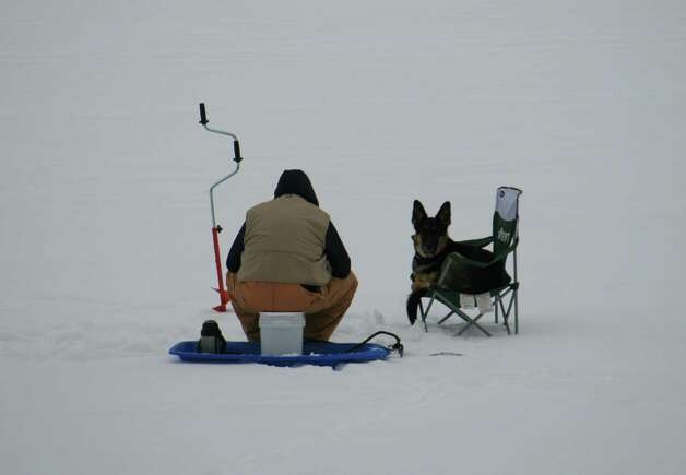 """TRUE DEVOTION Wendy Beard found this scene on Glass Lake early this month when temperatures were in the teens. The man and his dog were ice fishing for the entire day, the dog  never straying far as the man went from hole to hole. As soon as the fisherman set up the chair, the dog would climb in and patiently wait until the man decided it was time to check the next hole. """"Never noticed if they had any luck but they certainly seemed to enjoy each other?s company,"""" Beard said. (Wendy Beard) Photo: Picasa"""