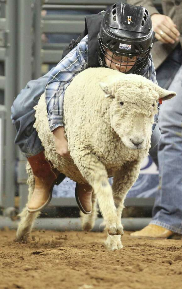 Kids need to learn how to hang on tight if they want to try some Mutton Bustin'. Photo: Mayra Beltran, Staff / © 2013 Houston Chronicle