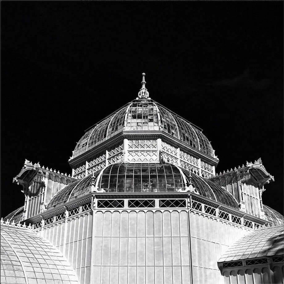 "Jason R., who goes by @jrodmanjr, turned ""an iPhone photo of the Conservatory of Flowers in Golden Gate Park...on an absolutely beautiful sunny afternoon"" into a mesmerizing black-and-white photo."