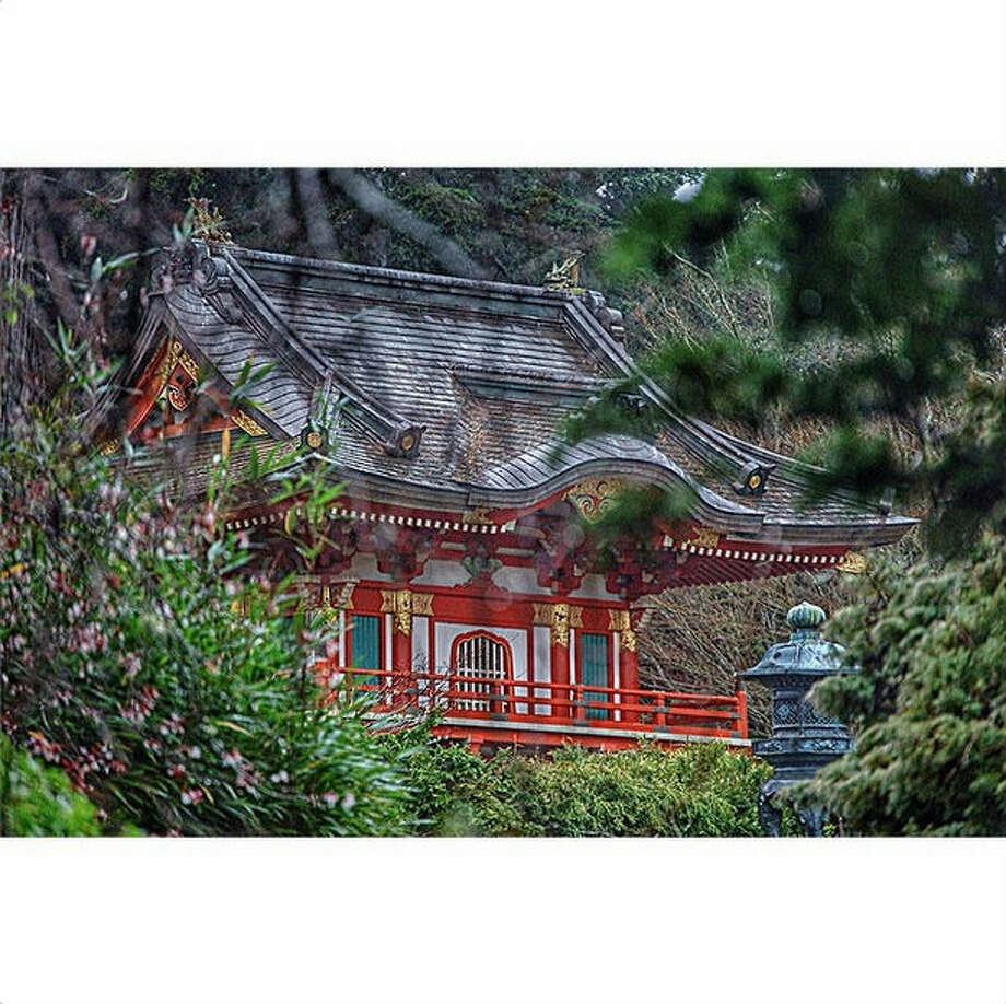 "Somphet P., or @khmu_minuti on Instagram, visited the Japanese Tea Garden in Golden Gate Park for the first time and took this lovely photo. She writes: ""It was my first time there and the best time, so it allowed me to capture it in a mythical way."""