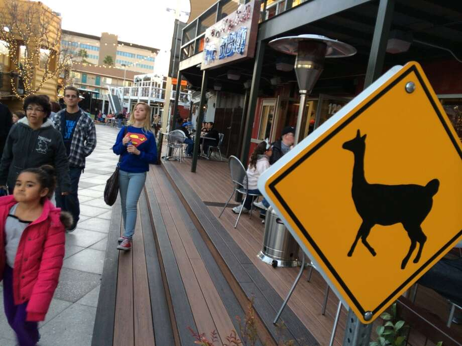 A llama-crossing traffic sign inside the Downtown Container Park in the East Fremont area of downtown Las Vegas. Photo: Spud Hilton, Bad Latitude