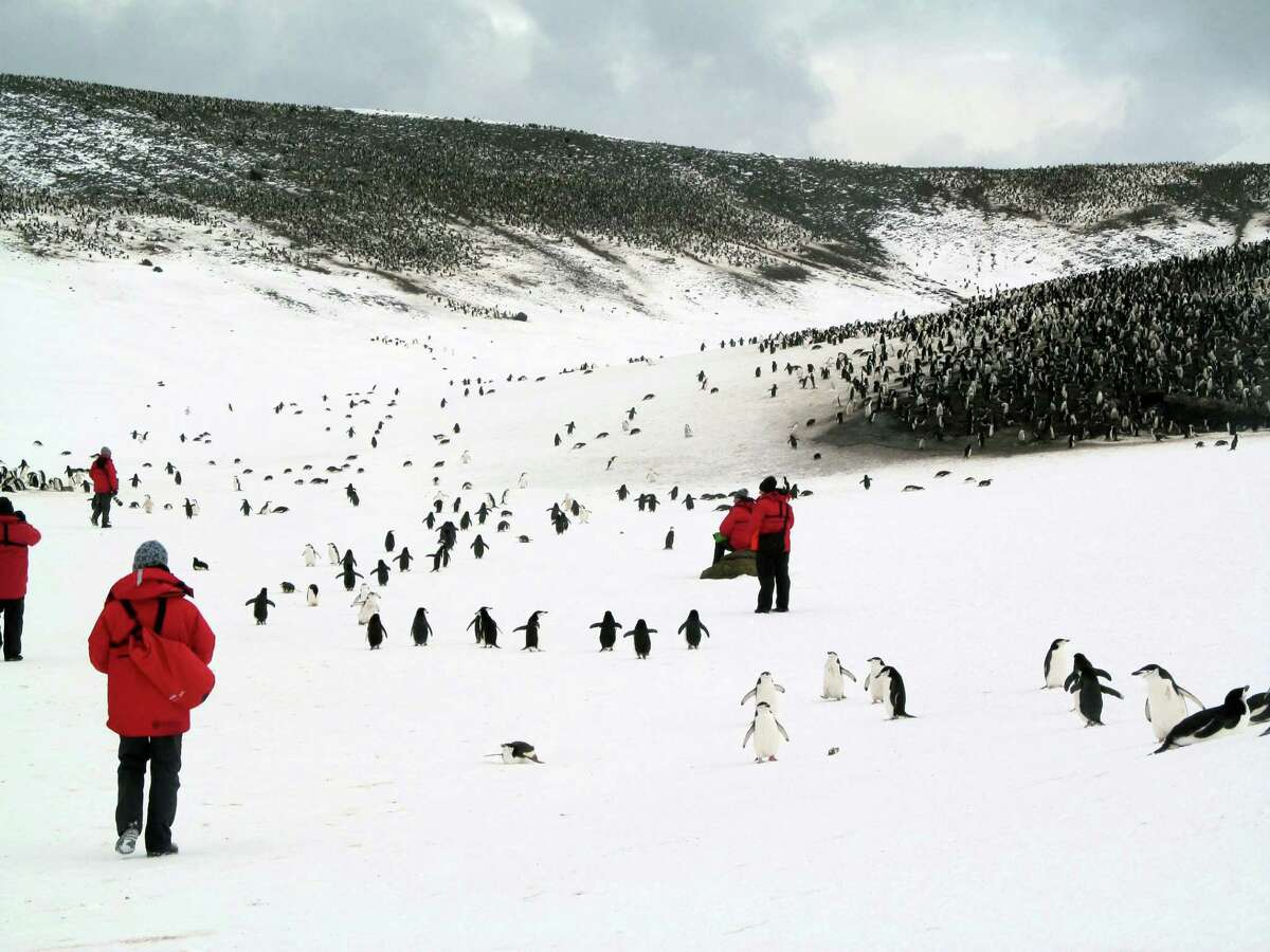 This is a reader submitted photo for our Postcard column by Ann Simanton from Bailey Head, Deception Island, Antarctica.