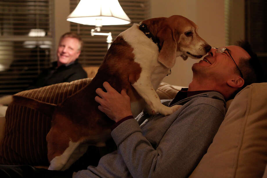 Mark Phariss, left, watches as Victor Holmes gets kisses from Jake, one of their three beagles, at their home in Plano on Friday, Feb. 7, 2014. Photo: Lisa Krantz / San Antonio Express-News