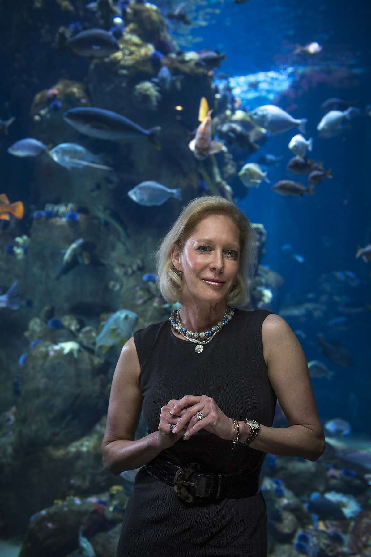 Wendy Schmidt, president of the Schmidt Family Foundation and co-founder of the Schmidt Ocean Institute, is seen at the California Academy of Sciences on Tuesday, Feb. 18, 2014 in San Francisco, Calif.