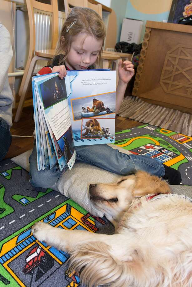 And all her friends said it was the best tea party they had ever been to and ... hey,   you're missing the best part!A library in Tartu, Estonia, borrows dogs like this golden   retriever for kids to read aloud to as part of a literacy project. Unfortunately, some of   the subjects have limited attention spans. Photo: Raigo Pajula, AFP/Getty Images