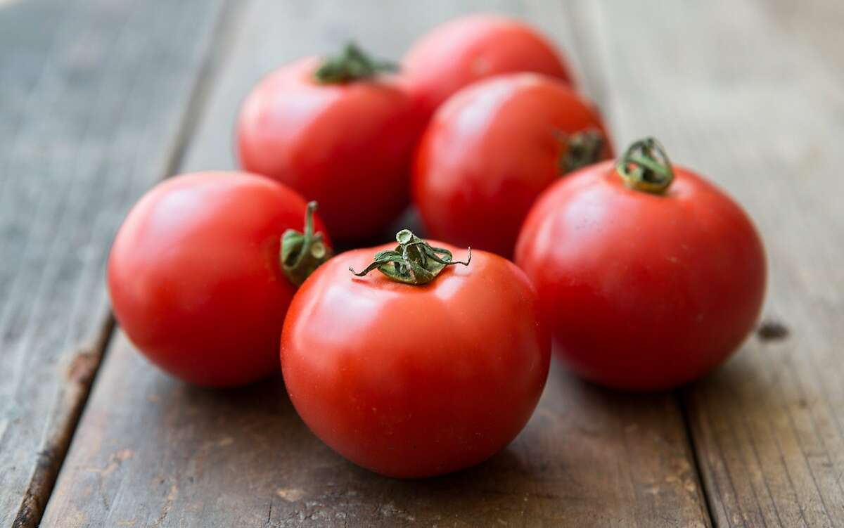 Joe Schirmer of Dirty Girl Produce in Santa Cruz, spent five years developing an alternative to the 'Early Girl' hybrid tomato. The result is an open-pollinated version dubbed Dirty Girl.