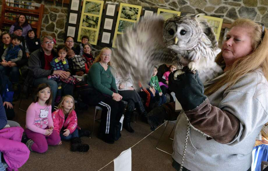 Volunteer Dawn Sotir holds Sebastian, a bard owl, during a presentation Saturday, Mar. 1, 2014, at the Ansonia Nature Center's Maple Festival in Ansonia, Conn. Photo: Autumn Driscoll / Connecticut Post