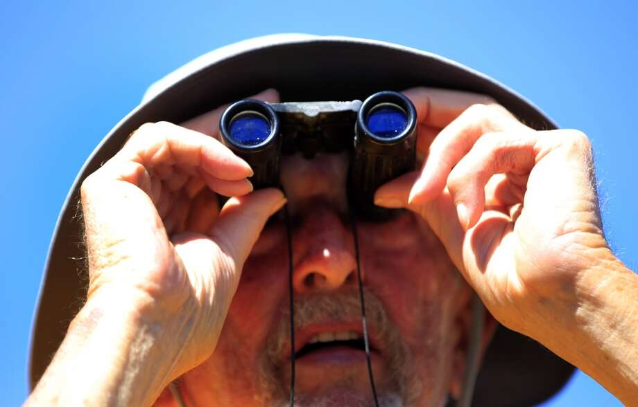 A Tigers fan uses his binoculars to watch the game. Photo: Karen Warren, Houston Chronicle