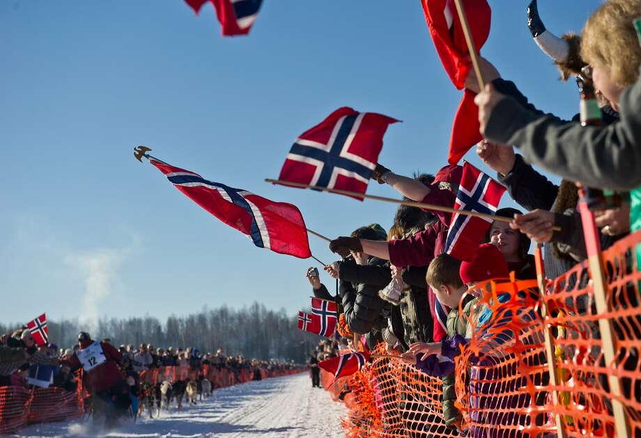 Fans of the Norwegian contingent of mushers cheer Tommy Jordbrudal, of Norway at the start of the Iditarod Trail Sled Dog Race on Sunday, March 2, 2014, in Willow, Alaska. (AP Photo/Anchorage Daily News, Marc Lester) Photo: Marc Lester, Associated Press