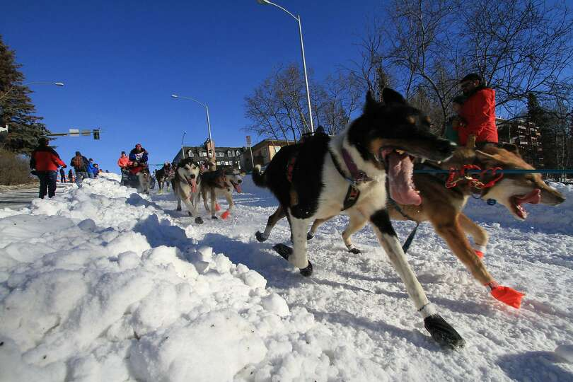 Musher Michelle Phillips of Tagish, Yukon Territory, drives her team of sled dogs down the Cordova S