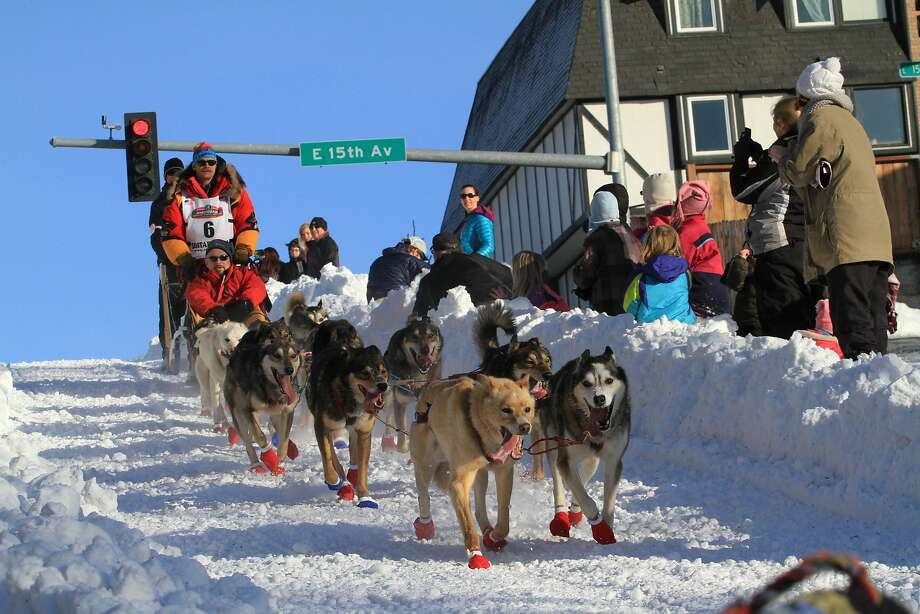 CORRECTS SPELLING TO SEAVEY, INSTEAD OF SEAVY - Reigning Iditarod champion Mitch Seavey drives his team down the Cordova Street hill during the ceremonial start of the Iditarod Trail Sled Dog Race on Saturday, March 1, 2014, in Anchorage, Alaska. (AP Photo/Dan Joling)) Photo: Dan Joling, Associated Press