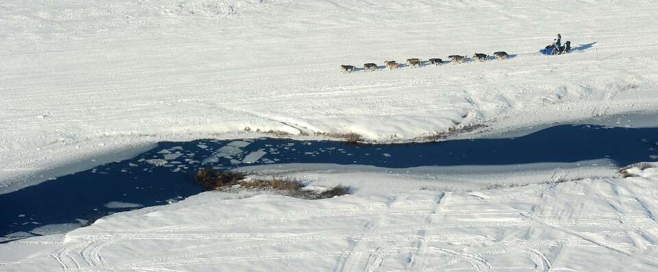 A musher drives his dog team past some open water just after the start of the 2014 Iditarod Trail  S