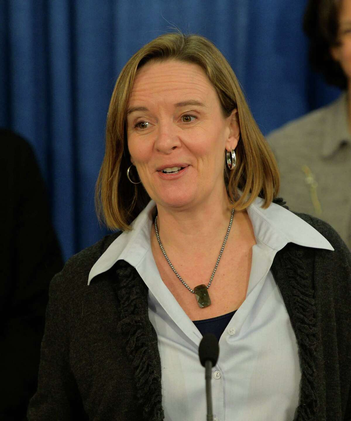 Kate Breslin, CEO of the Schuyler Center for Analysis & Advocacy, is joined by members of Health Care for All New York (HCFANY) during a press conference on Monday, March 3, 2014, at the Legislative Office Building in Albany, N.Y. The allied groups gathered to discuss their campaign to ensure that the Assembly and Senate's bills to be released this week include a package of proposals that would improve health insurance affordability and coverage options available to consumers. (Skip Dickstein / Times Union)