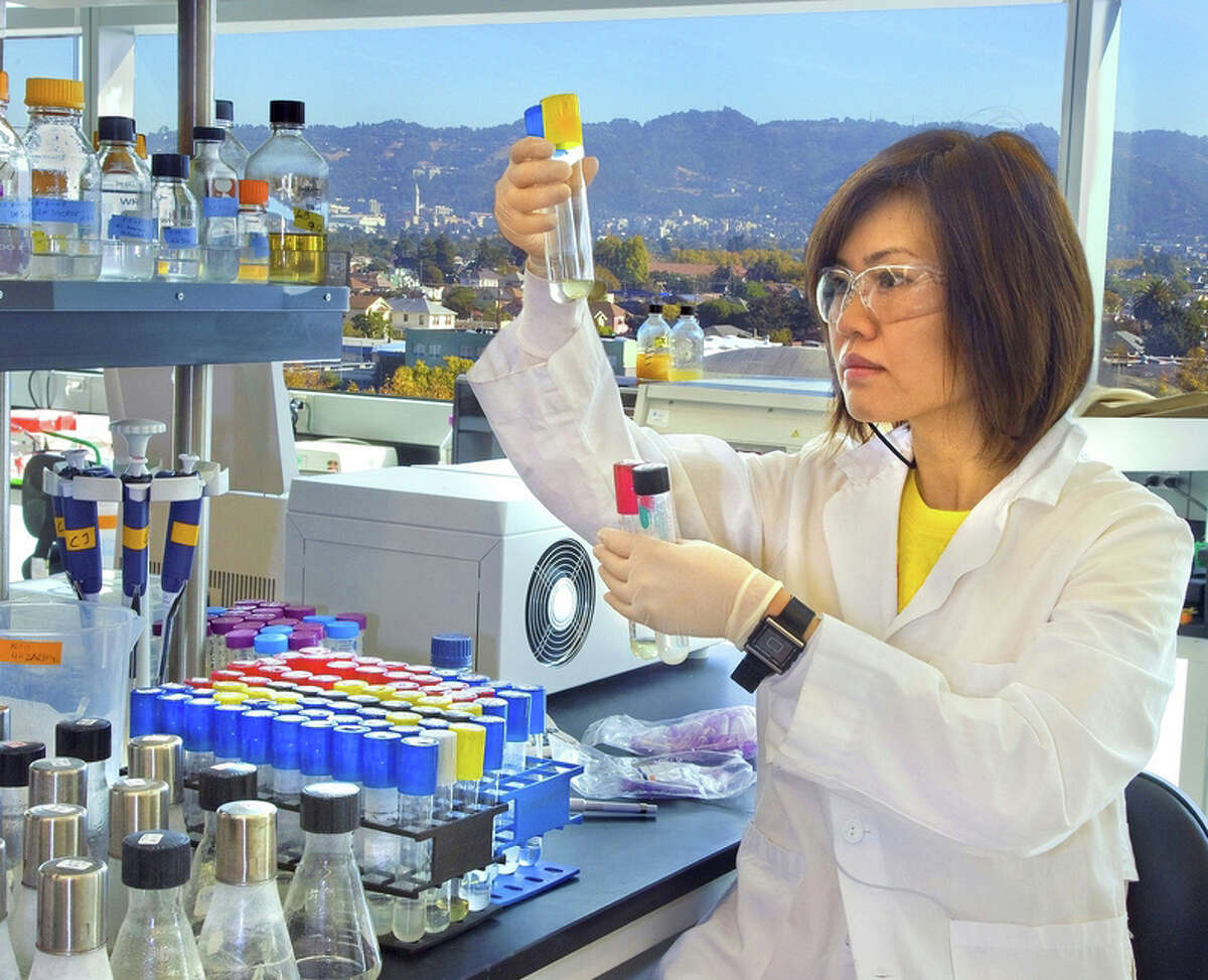"""in this file photo, a researcher uses """"synbio"""" to engineer new microbes as an alternative to yeast for turning complex sugars into biofuels. Proponents of synthetic biology tout its potential for bringing about great advances in medicine, energy and cheaper foods. But health advocates worry that the risks to health and the environment may be too great."""