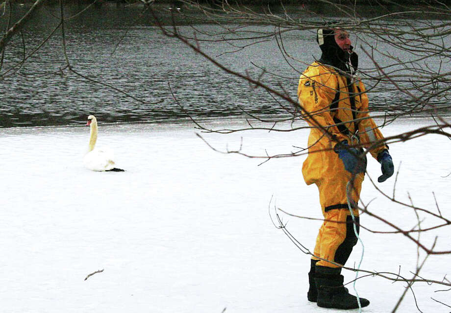 Firefighter Jordan Charney prepares to head out on the icy surface of Perry's Mill Pond to free a swan that became trapped Monday when its feathers froze in the ice. Photo: Fairfield Fire Department / Fairfield Citizen