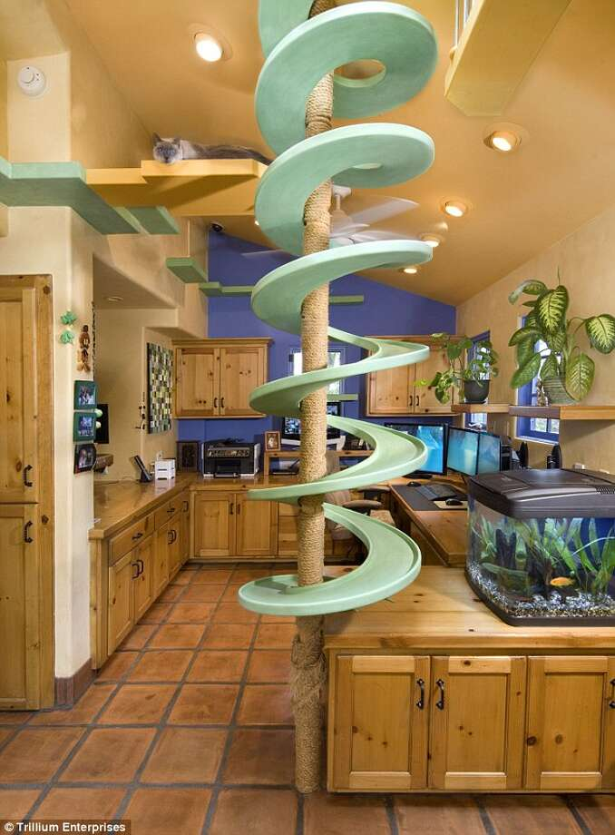 A spiral catwalk surrounds a scratching post. The Goleta home was renovated by Santa Barbara company Trillium Enterprises. Photo: Lepere Studio, © Trillium Enterprises
