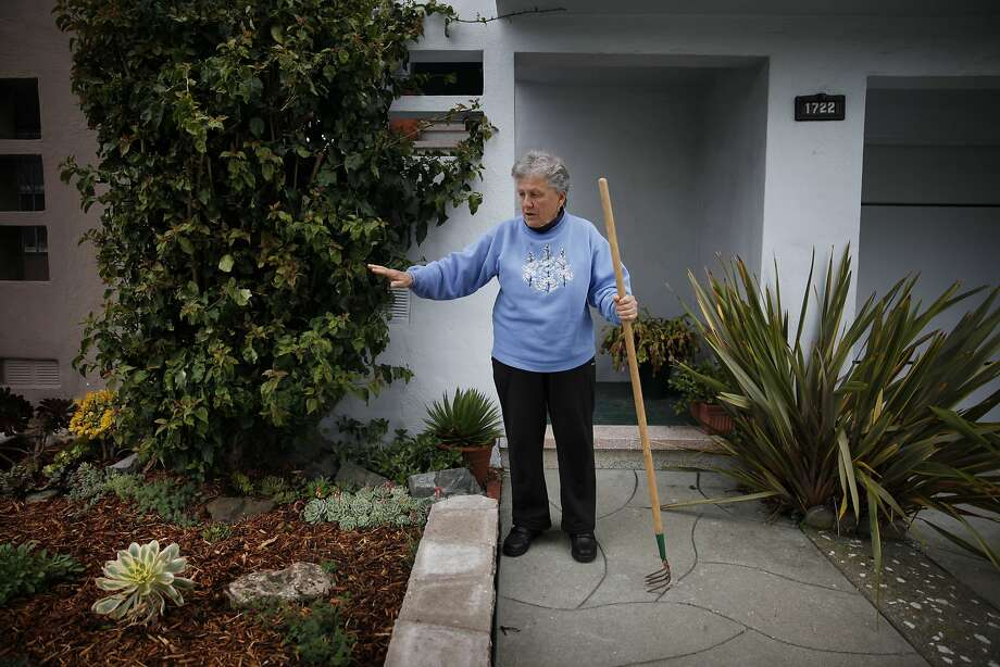 Top: Sunset District resident Gail Secchia stands in her yard, which she improved with help from the Front Yard Ambassadors program. Photo: Lea Suzuki, The Chronicle