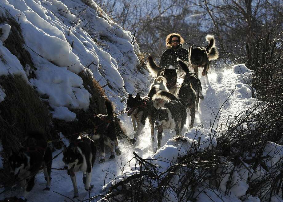 Full steam ahead: Iditarod racer Rick Casillo drives his sled dogs on the final leg of the descent to Alaska's Happy River between the Finger Lake and Rainy Pass checkpoints. Photo: Bob Hallinen, Associated Press