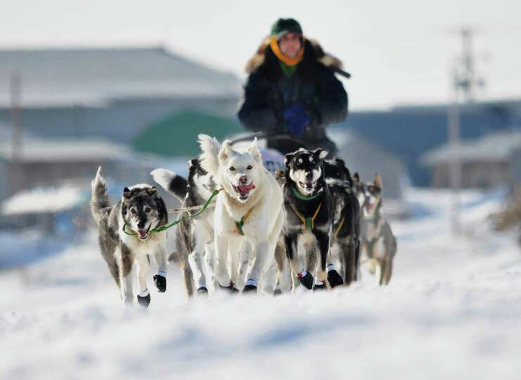 [UNVERIFIED CONTENT] Sled dog team and musher leaving Unalakleet, Alaska, in the Iditarod Trail Sled