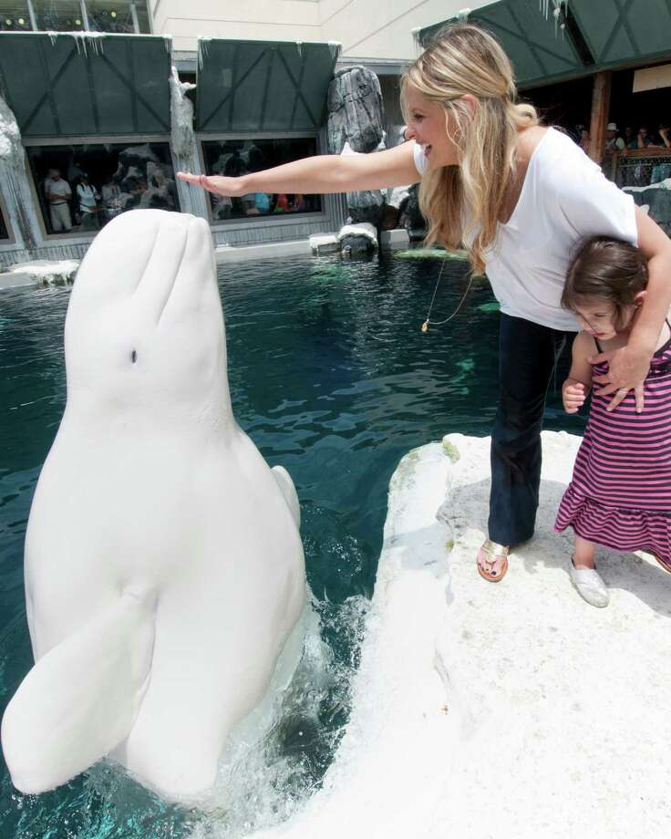 Drivers here wasted 24.3 hours in traffic in 2013. Photo: Handout, Getty Images / 2012 SeaWorld