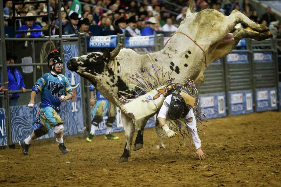 Brant Atwood is thrown off a bull during the BP Super Series I, Round 2 Bull Riding competition during the Houston Livestock Show and Rodeo, Wednesday, March 5, 2014, in Houston. Photo: Marie D. De Jesús, Houston Chronicle / © 2014 Houston Chronicle