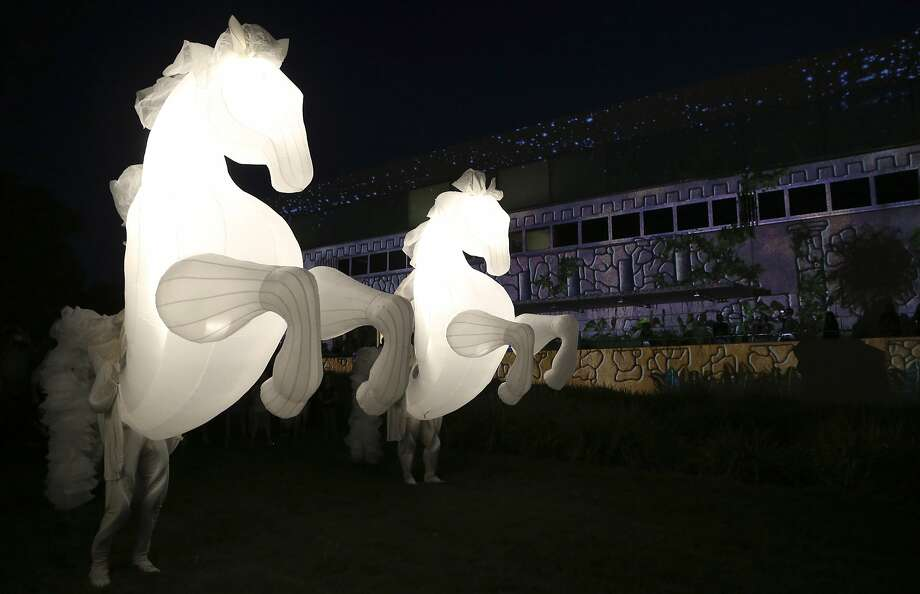 Humans create beauty by pretending to be horses' asses:Equine puppets prance during the Enlighten Festival in Canberra, Australia. Each puppeteer for the Fiers A Cheval show serves as the hindquarters of a stallion lit from within. By dancing and moving the figure, a dreamlike image of horses galloping in the night is achieved. Photo: Rob Griffith, Associated Press