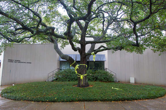 "A tree wrapped in caution tape is seen in front of the Martel Center, ""Art Barn,"" at Rice University, Tuesday, March 4, 2014, in Houston. Rice University has opted to tear down an historic building constructed by legendary Houston art icons the Menils in what some are calling an ""insult"" to their history. The Martel Center was built in 1969 by architects Howard Barnstone and Eugene Aubry and has housed works by the likes of Andy Warhol, Edward Kienholz and pioneering American artist and sculptor Joseph Cornell. (Cody Duty / Houston Chronicle)"