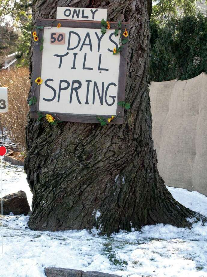 Though there's still snow on the ground, Darienites are already counting down the days until Spring. According to this tree in front of the Cullman residence on Middlesex road, there were only 50 days left as of last Friday. Photo: Maggie Gordon / Darien News