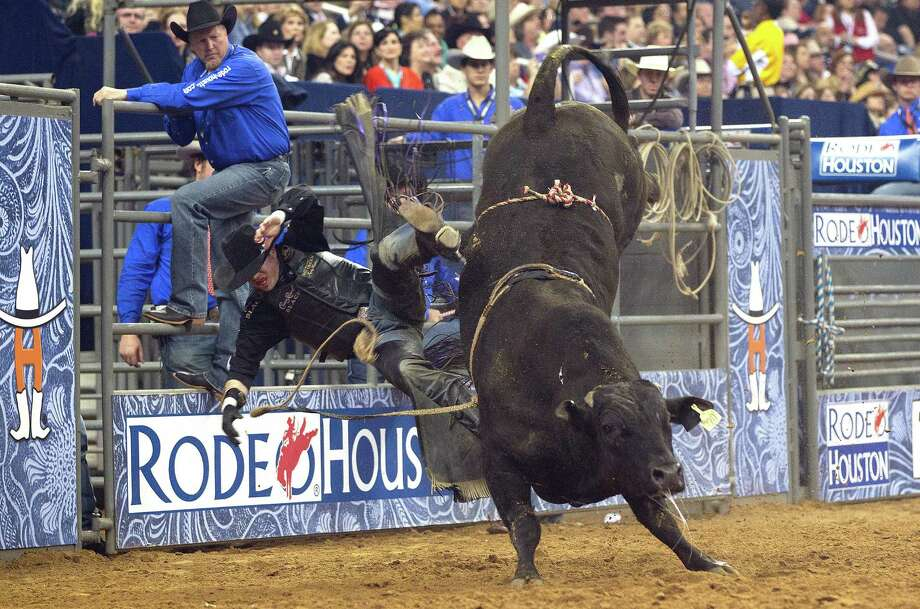 Wesley Silcox is bucked off by a bull during the Bull Riding event during the first round of Rodeo Houston BP Super Series lll at the Houston Livestock Show and Rodeo at Reliant Stadium Monday, March 10, 2014, in Houston. Photo: Johnny Hanson, Houston Chronicle / © 2014  Houston Chronicle