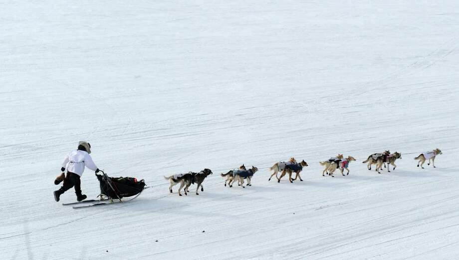 Iditarod musher Aliy Zirkle, from Two Rivers, Alaska, leaves in 2nd place from the White Mountain checkpoint during the 2014 Iditarod Trail Sled Dog Race on Monday, March 10, 2014. (AP Photo/The Anchorage Daily News, Bob Hallinen) Photo: Bob Hallinen, Associated Press / Anchorage Daily News