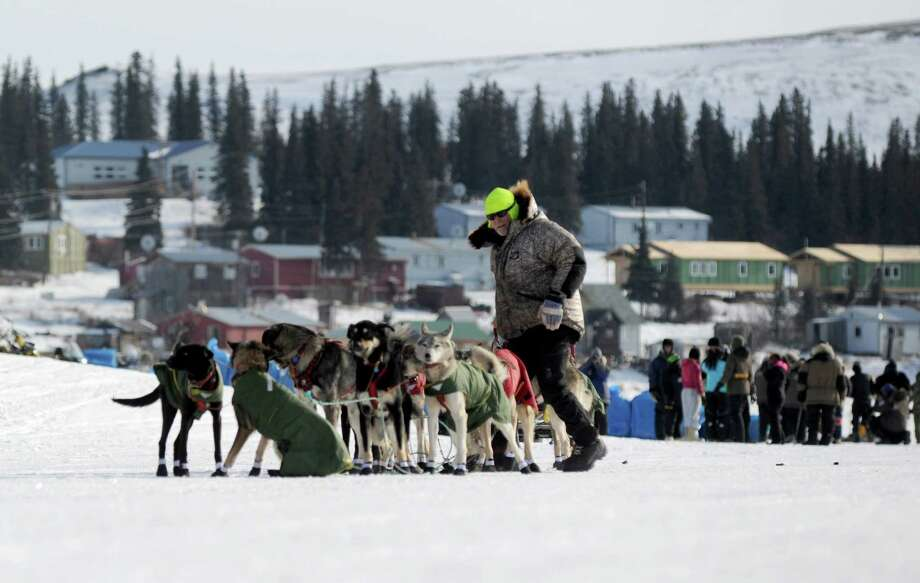 Iditarod musher Jeff King, from Denali, Alaska, is the first musher to leave the White Mountain checkpoint during the 2014 Iditarod Trail Sled Dog Race on Monday, March 10, 2014. (AP Photo/The Anchorage Daily News, Bob Hallinen) Photo: Bob Hallinen, Associated Press / Anchorage Daily News