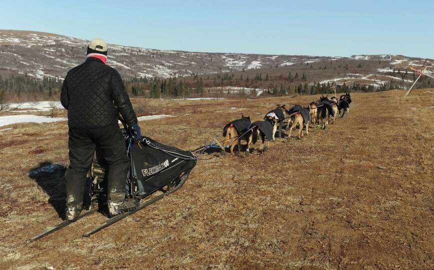 Iditarod musher Jessie Royer, from Darby, MT, mushes over bare tundra on the Blueberry Hills out of