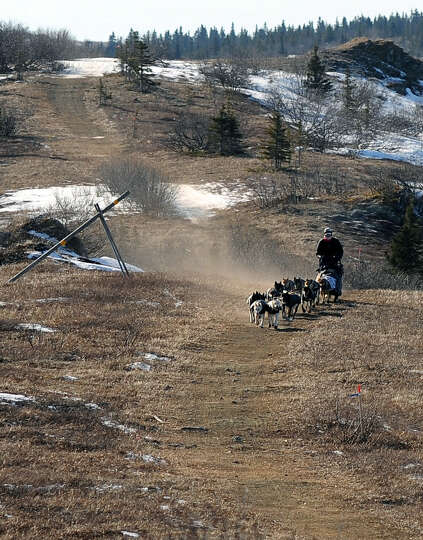 Iditarod musher Jessie Royer, from Darby, Mont., kicks up a cloud of dust as she mushes over bare gr
