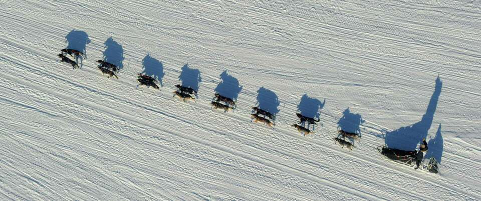 Nathan Schroeder drives his dog team down the trail just after the start of the 2014 Iditarod Trail