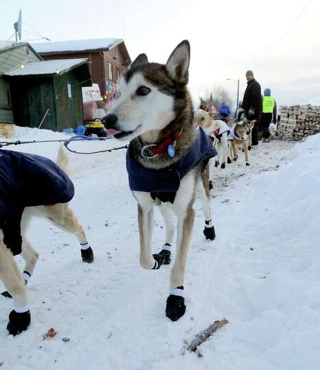 Iditarod musher Allen Moore, from Two Rivers, Alaska leaves the Takotna checkpoint during the Iditar