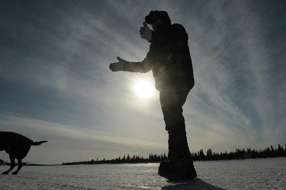 Iditarod musher Jeff King, from Denali, Alaska, takes one of dogs for a walk on the frozen Fish River as he prepares to leave in first place from the White Mountain checkpoint during the 2014 Iditarod Trail Sled Dog Race on Monday, March 10, 2014. (AP Photo/The Anchorage Daily News, Bob Hallinen) ORG XMIT: AKAND208 Photo: Bob Hallinen, AP / Anchorage Daily News
