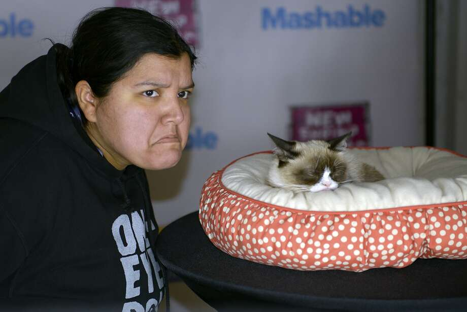 Grumpiness rampant at SXSW:An admirer visits Grumpy Cat, the Internet phenomenon, at the the SXSW interactive festival in Austin. Photo: Stephen McLaren