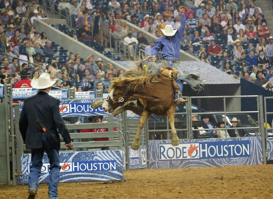 Bryce Miller shoots out of the gate during the Saddle Bronc  Riding event in the second round of the Rodeo Houston BP Super Series lll at the Houston Livestock Show and Rodeo at Reliant Stadium Tuesday, March 11, 2014, in Houston. Photo: Johnny Hanson, Houston Chronicle / © 2014  Houston Chronicle