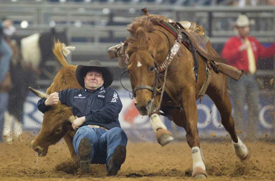 Billy Bugenig takes down a steer in the Steer Wrestling event during the second round of the Rodeo Houston BP Super Series lll at the Houston Livestock Show and Rodeo at Reliant Stadium Tuesday, March 11, 2014, in Houston. Photo: Johnny Hanson, Houston Chronicle / © 2014  Houston Chronicle