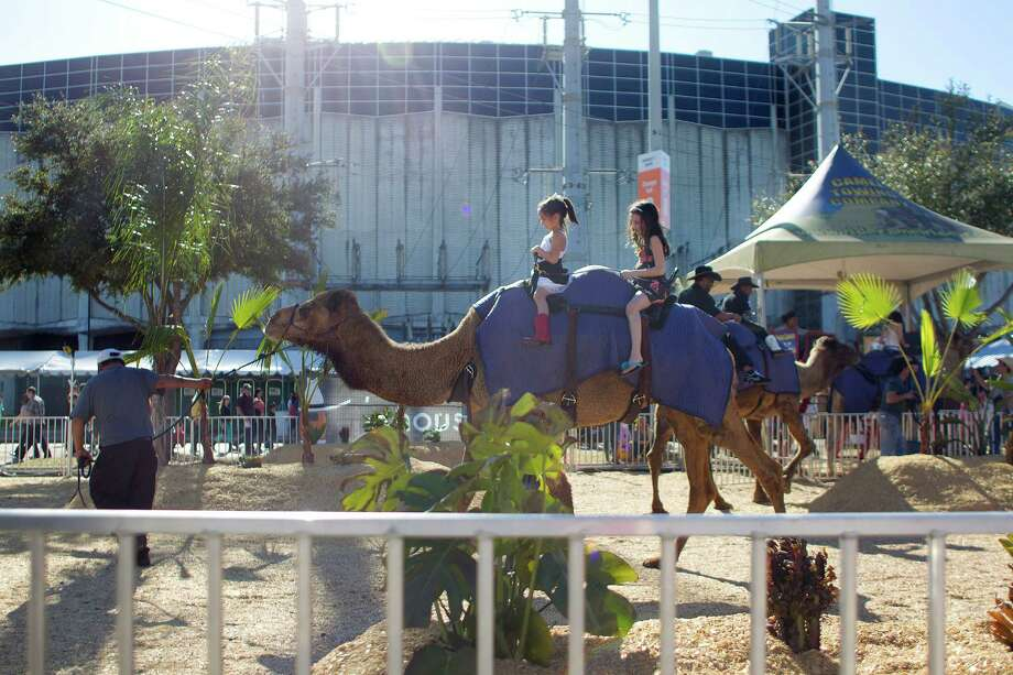 Children ride a camel outside of the Astrodome in the carnival area of the Houston Livestock Show and Rodeo Tuesday, March 11, 2014, in Houston. Photo: Johnny Hanson, Houston Chronicle / © 2014  Houston Chronicle