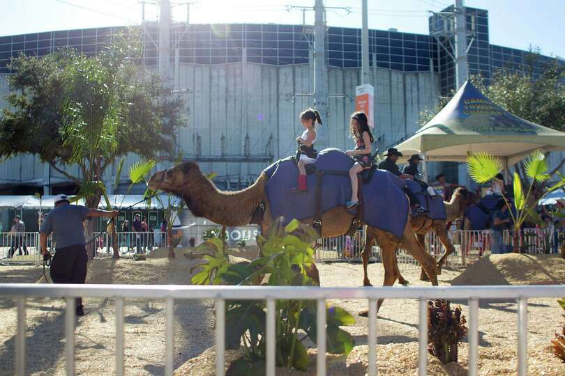 Children ride a camel outside of the Astrodome in the carnival area of the Houston Livestock Show an
