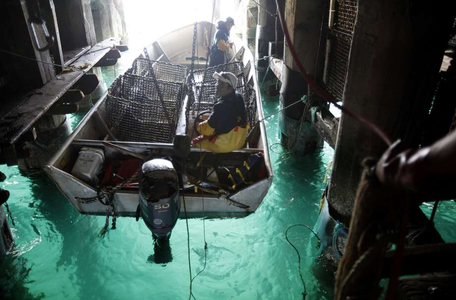 Workers take the boat out to harvest kelp to feed the abalone at the Monterey Abalone Company. Photo: Sarah Rice, Special To The Chronicle