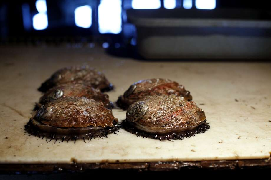 Abalone sit on the table while being cleaned at the Monterey Abalone Company in Monterey. Photo: Sarah Rice, Special To The Chronicle