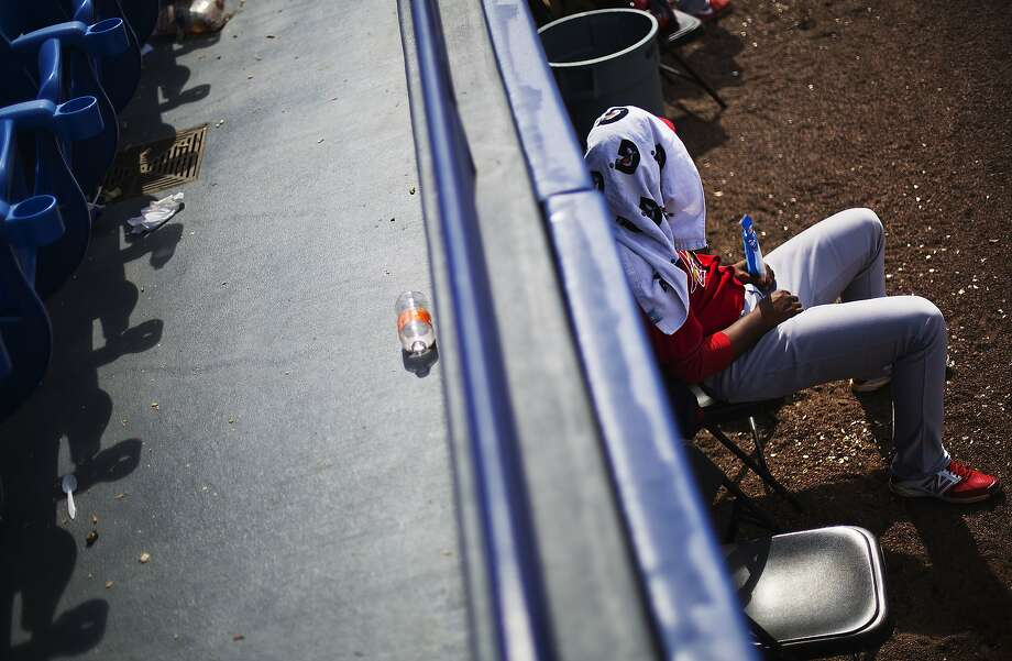 St. Louis Cardinals pitcher Alex Reyes sits with a towel over his head while watching an exhibition spring training baseball game against the New York Mets from the first baseline, Wednesday, March 12, 2014, in Port St. Lucie, Fla. (AP Photo/David Goldman) Photo: David Goldman, Associated Press
