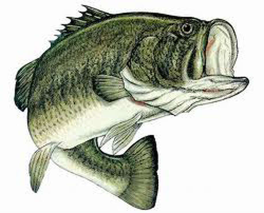 Hemphill ISD approves a Bass Club