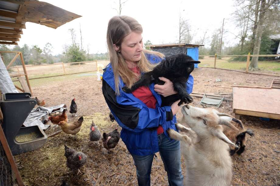 Angie Dickerson holds one of the goats raised at her home for the Beaumont Farmer's Market. The Dickersons raise chickens that lay eggs to be sold at the Beaumont Farmer's Market. The Dickerson's use goat's milk to make soap. Photo taken Wednesday, March 05, 2014 Guiseppe Barranco/@spotnewsshooter