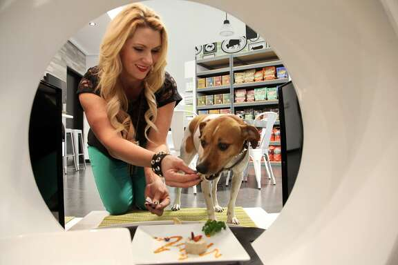 FILE - In This Jan. 2, 2014 file photo, store co-owner, Janene Zakrajsek feeds a dog a gourmet meal at the Pussy & Pooch Pet Lifestyle Center store in Beverly Hills, Calif. An industry spokesman said Americans spent an all-time high of $55.7 billion on their pets in 2013 and will creep close to $60 billion this year on Thursday, March 13, 2014. (AP Photo/Nick Ut, File)