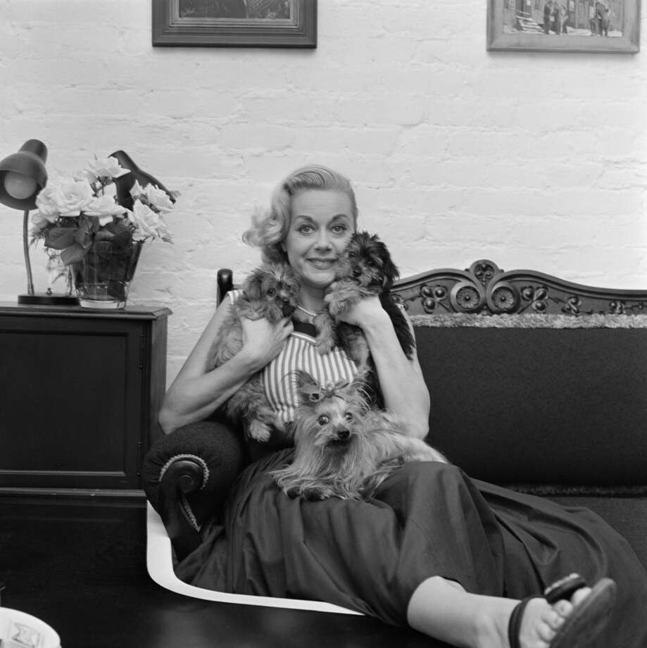 "June Havoc -- The ""General Hospital"" and American Theatre Hall of Fame actress lived in Wilton. Photo: CBS Photo Archive, CBS Via Getty Images"